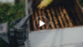 VİDEO TASLAK-18-01.jpg