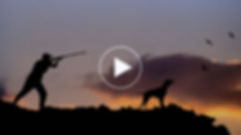 VİDEO TASLAK-26-01.jpg
