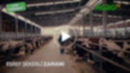 VİDEO TASLAK-5-01.jpg