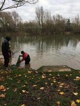 Netting Bottom Lake