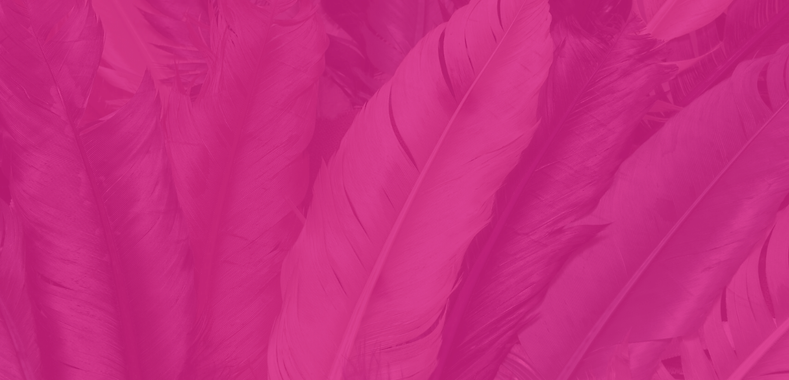 Pink Feather Background - Website.png