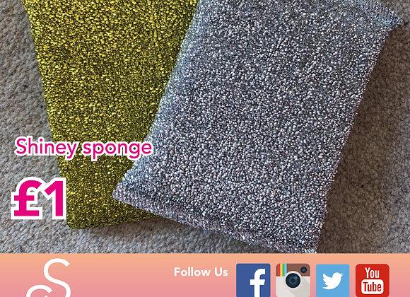 Shiney sponge