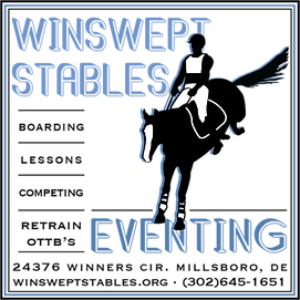 Winswept Logo 2 copy.png