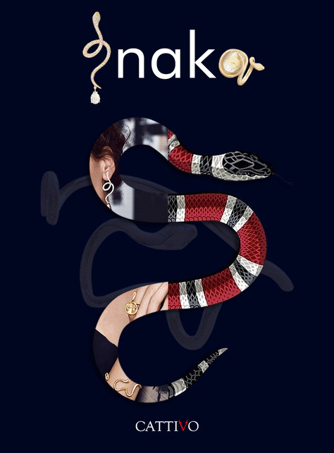 105_snake_a_18Jan10.jpg