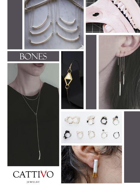 42_bones_c_17Apr21.jpg