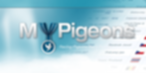 mypigeons.png