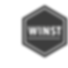 2018-08-15 - Logo website - winst_transp