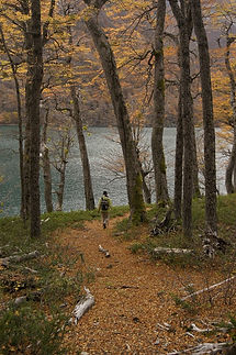 Safari fotografico en lago Baguilt Trevelin Paragonia Argentina