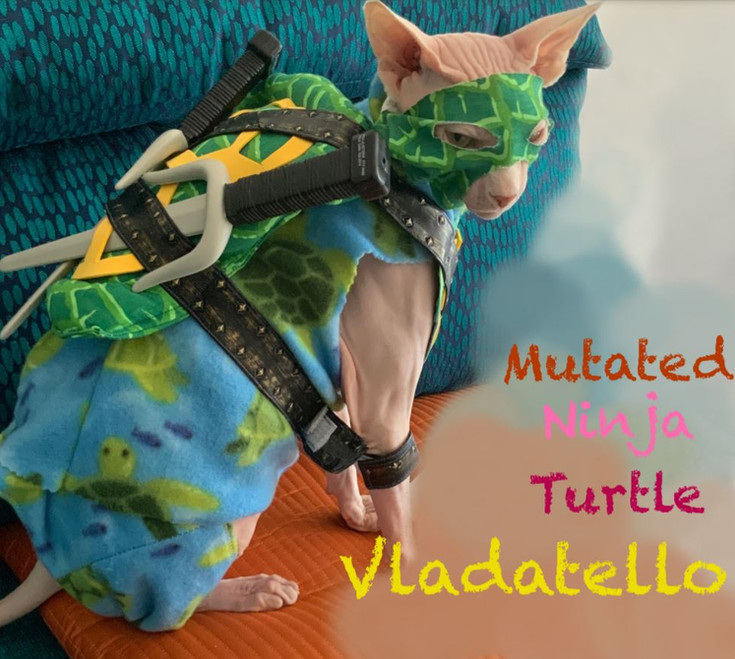 Mutated Ninja Turtle Vladatello