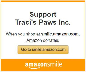 Support Traci's Paws with AmazonSmile.JP
