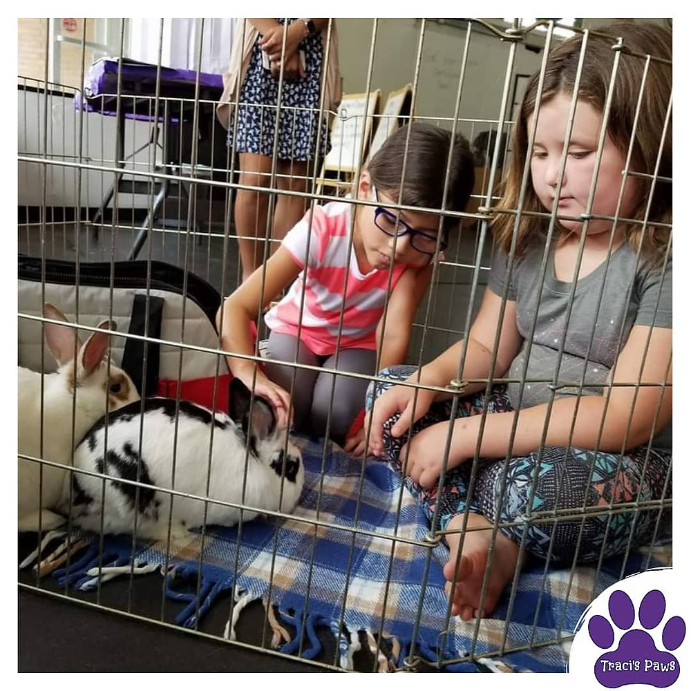Traci's Paws facilitated a Humane Education class with rabbits, and these two girls were in attendance.