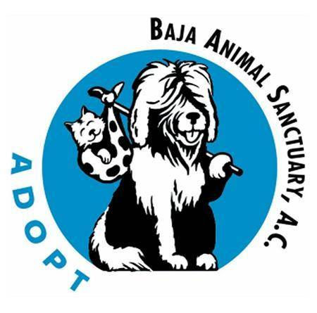 Baja Animal Sanctuary