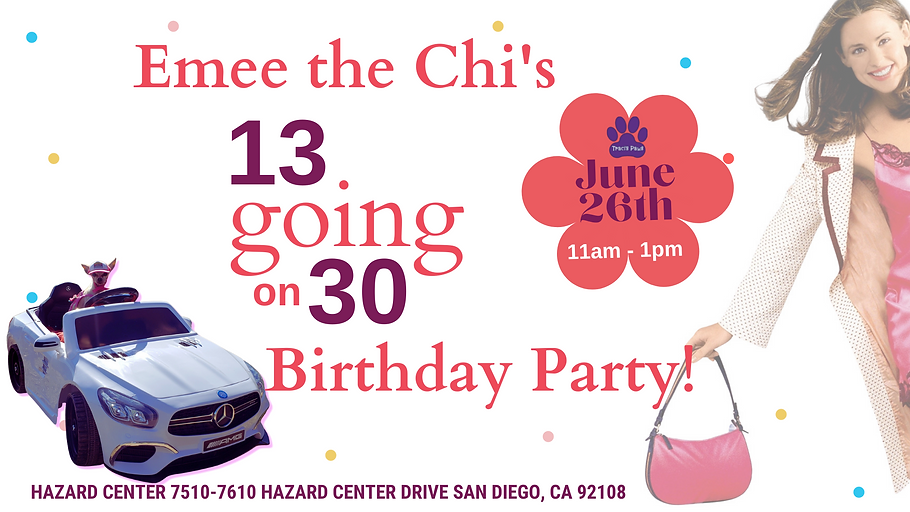 Traci's Paws, Emee the Chi's 13 Going on 30 Birthday Party Event Cover Traci's Paws.png