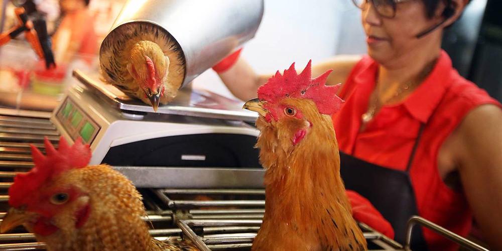 David Wong/South China Morning Post via Getty Images
