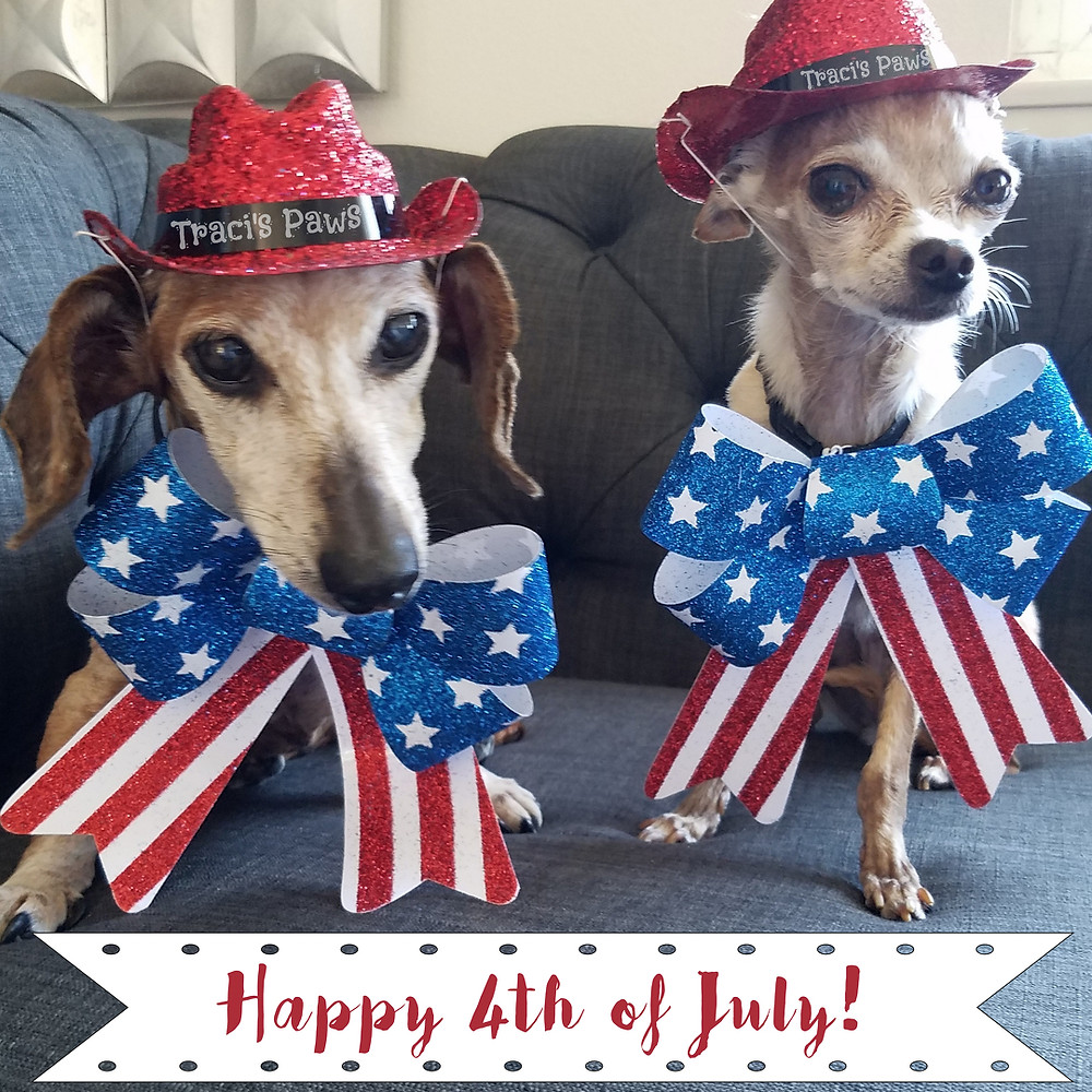 Traci's Paws Spokesdogs Lexi and Emee wish everyone a happy ans safe 4th of July!
