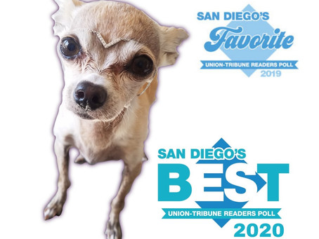 San Diego's Best Of: Union Tribune Reader's Poll, Traci's Paws as BEST Charity!