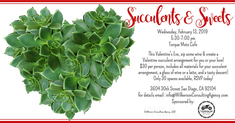 WAC Succulents  Sweets 21319 (1).jpg