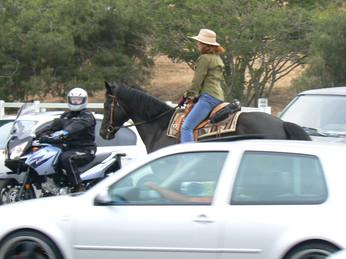 Rolling Hills Estates Traffic Safety