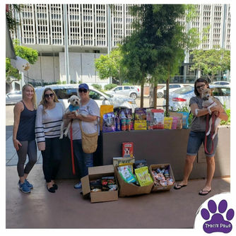 Second Chance Rescue pet food drive.jpg