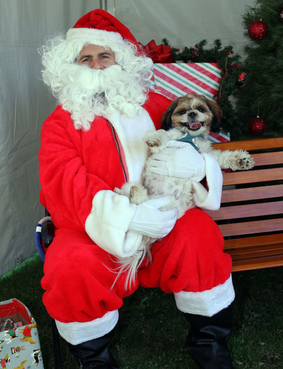 Santa at Traci's Paws Unleash the Holida