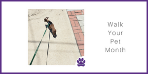 Walk your pet month