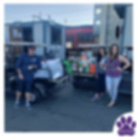 Traci's Paws Pet food and Bedding Donati