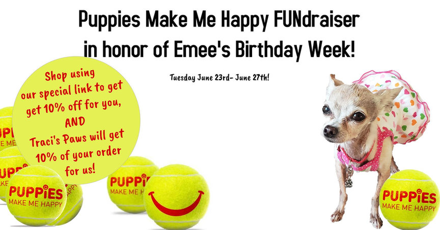 Emee the Chi's Puppies Make Me Happy Fun