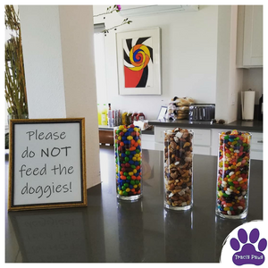 Make signs letting guests know to not feed your pets snacks you have displayed at Thanksgiving dinner. Traci's Paws Thanksgiving Pet Safety