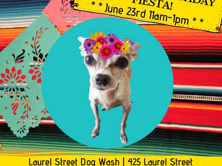 Sunday June 23rd Emee's 11th Birthday Fiesta!