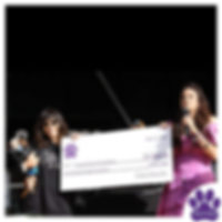 Traci's Paws, Fundraisers