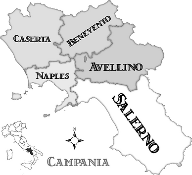 campania-provinces_edited.png