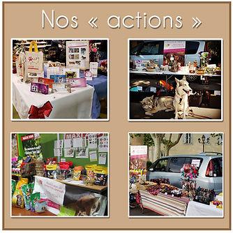 Nos actions V2.jpg