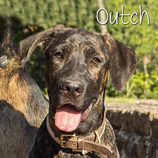 pc-outch-02.jpg