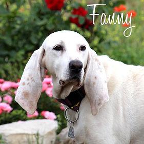PC Fanny 02.jpg