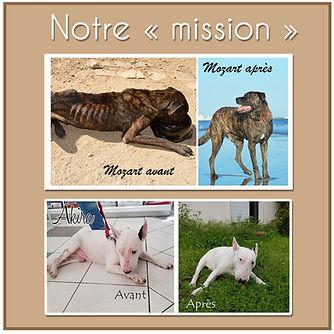 Notre Mission V2.jpg