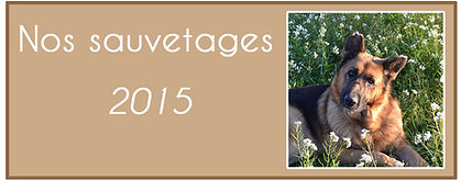 PtitBeau 2015.jpg