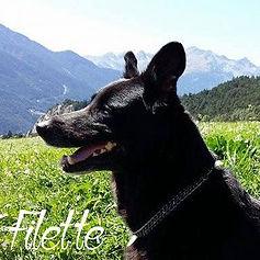 pc-filette-1.jpg