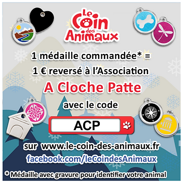 Coin des animaux.png