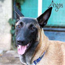 PC Argos.jpg