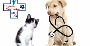 Liste de Vétérinaires de Garde soir & Week-end / Hérault (34) et Gard (30)
