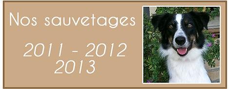 Ashley 2011 - 2012 - 2013 2.jpg