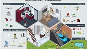 Intoxications – Et si le coupable se cachait dans votre maison ?