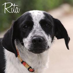 PC Rita.jpg