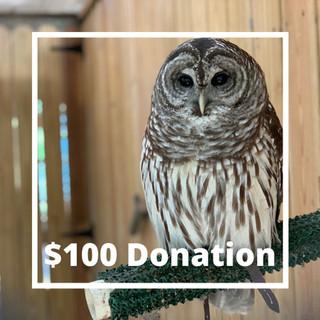 Donations (1).jpg