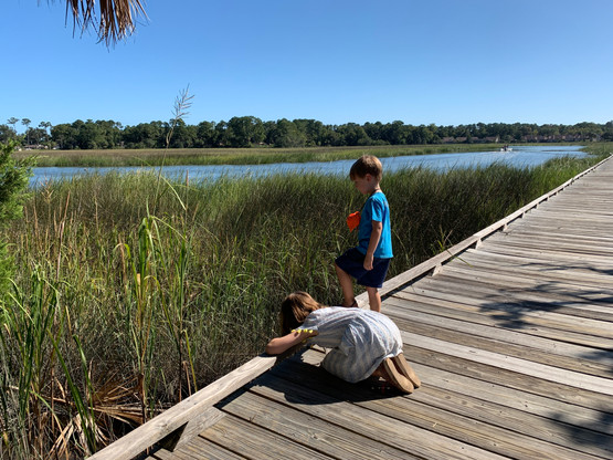 Oatland Island, Savannah, GA marsh boardwalk