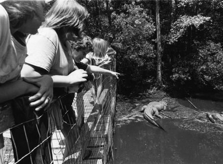 From the Archives: Oatland Island Wildlife Center