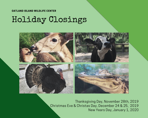 Oatland Island Wildlife Center Holiday Hours and Closures