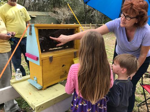Beekeeping 101, Oatland Island Wildlife Center