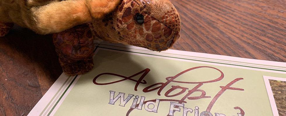 Gopher Tortoise Adoption + Stuffed Animal