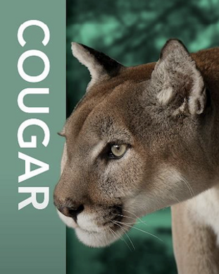 Cougar Corporate Sponsorship Friends of Oatland Island